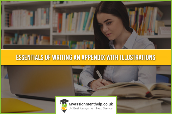 Essentials of Writing an Appendix with Illustrations